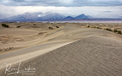 Mesquite Flat sand dunes  Death Valley, California