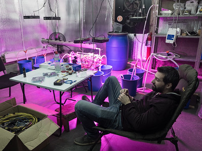 Bitcoin miner Irakali J. Pruidze relaxes in his office, with hydroponic tomatoes grown from heat produced from bitcoin mining in the background. Tbilisi, Republic of Georgia. Photo: Joe Harrison.