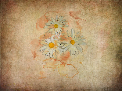 Painterly Flowers
