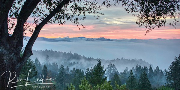 Foggy sunrise over Napa Valley