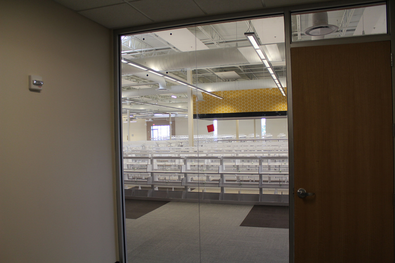 view of the adult collections area from inside a study room