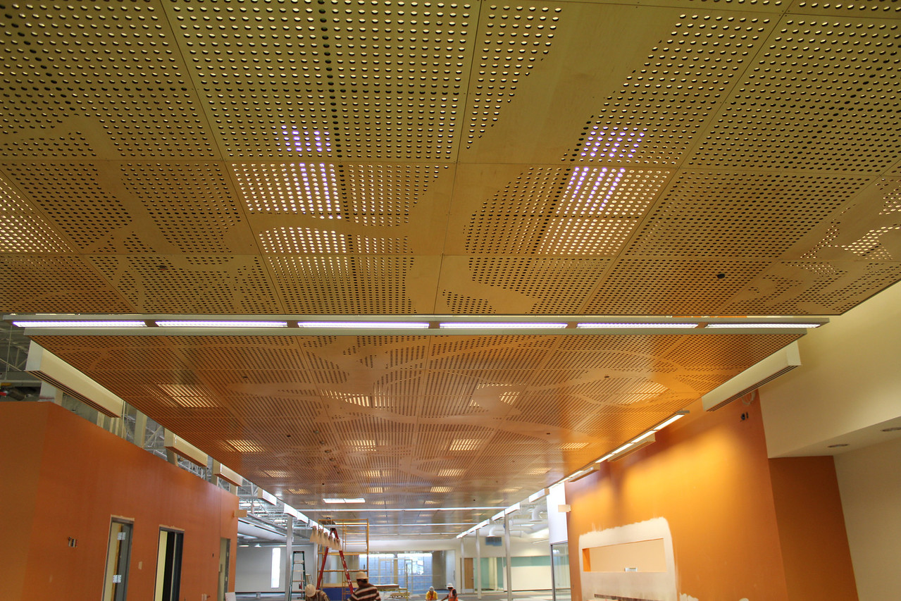A view of the custom-made, laser-cut ceiling panels running from the library's entrance to the quiet reading room (far back). The pattern on the panels is based on the leaves and branch extensions of the mesquite tree.