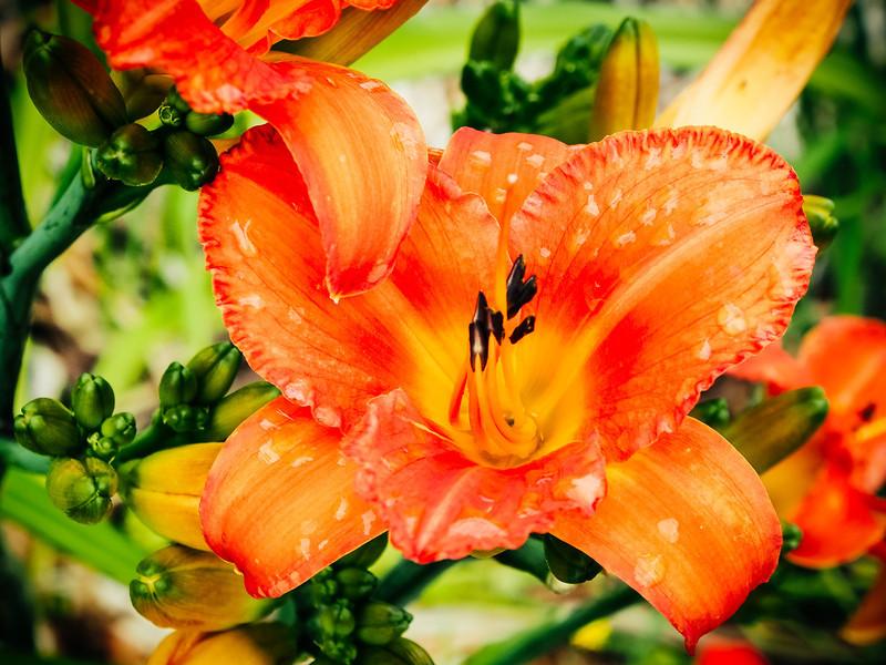 From my blog at www.stewartbaird.com     Follow me on Twitter     Google+