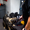 Corporal Matt Sanchez gives Amp her toy after completing a search of a locker room in Fountain Middle School in Fountain, Colo. Photographed on Tuesday, Oct. 10, 2017. Amp is trained using her toy as positive reinforcement.<br /> <br /> (The Gazette, Nadav Soroker)