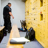 Corporal Matt Sanchez and Amp search a locker room at Fountain Middle School in Fountain, Colo. on Tuesday, Oct. 10, 2017.<br /> <br /> (The Gazette, Nadav Soroker)