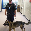 Corporal Matt Sanchez and Amp walk the halls at Fountain Middle School in Fountain, Colo. on Tuesday, Oct. 10, 2017. Amp was been assigned to the school in August, and was at Fountain-Fort Carson High School the previous year.<br /> <br /> (The Gazette, Nadav Soroker)