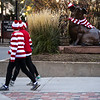 Runners in the Waldo Waldo 5k pass a statue dressed up for the race on Saturday, Oct. 21, 2017.<br /> <br /> <br /> (The Gazette, Nadav Soroker)