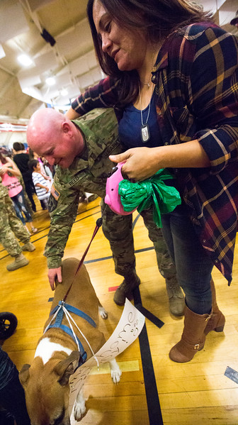 "Staff Sergeant Joshua Reed pets Sasha while his wife, Monique Reed, watches at the homecoming for the 3rd Armored Brigade in the William ""Bill"" Reed Special Events Center in Fort Carson, Colo. on Sunday, Oct. 22, 2017.<br /> <br /> <br /> (The Gazette, Nadav Soroker)"