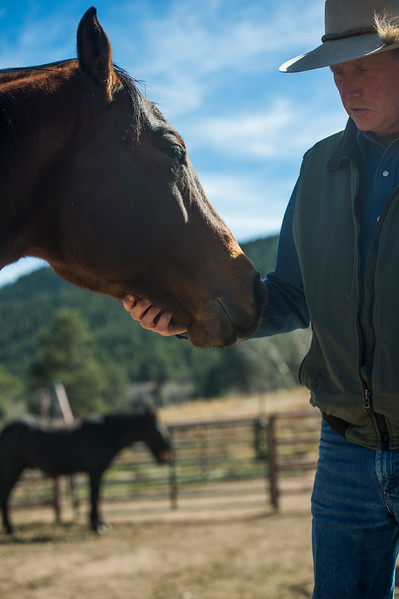 Glenn Ryan gives his horse, Karmel, attention in the corral at AG Ranch in Bailey, Colo. Photographed on Tuesday, Oct. 24, 2017.<br /> <br /> <br /> (The Gazette, Nadav Soroker)