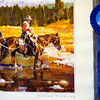 A 2005 Best Livestock award that Glenn Ryan won in Durango shortly after transferring to AG Ranch in Bailey, Colo. Photographed on Tuesday, Oct. 24, 2017. Ryan has been a horse person all his life, coming from a family known for their Percheron Draft Horses, riding jumpers as kid, and working for the Forest Service or cowboying most of his adult life.<br /> <br /> <br /> (The Gazette, Nadav Soroker)