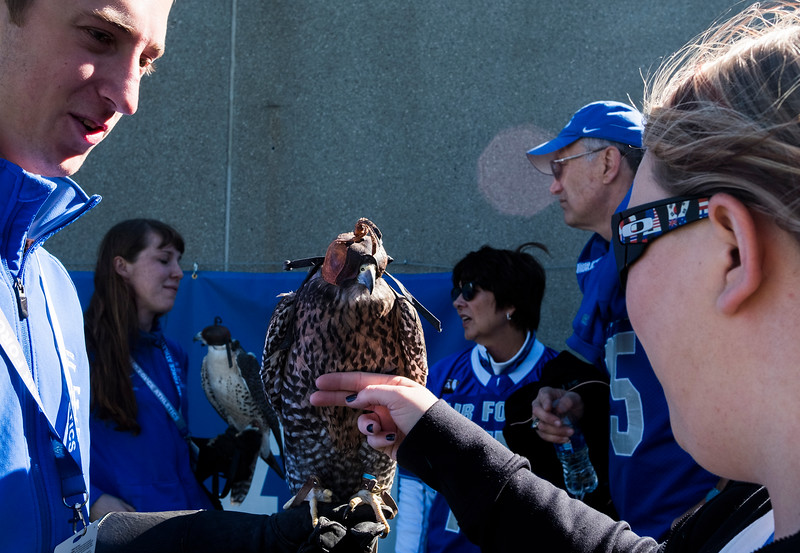 Cadet Sean Weathersby, left, introduces Nicole Santistevan to Ace, a hybrid falcon that is part of the Air Force Falcons mascot team at Falcon Stadium on Saturday, Nov. 4, 2017. Ae is a hybrid of Gyr and Saker falcons.