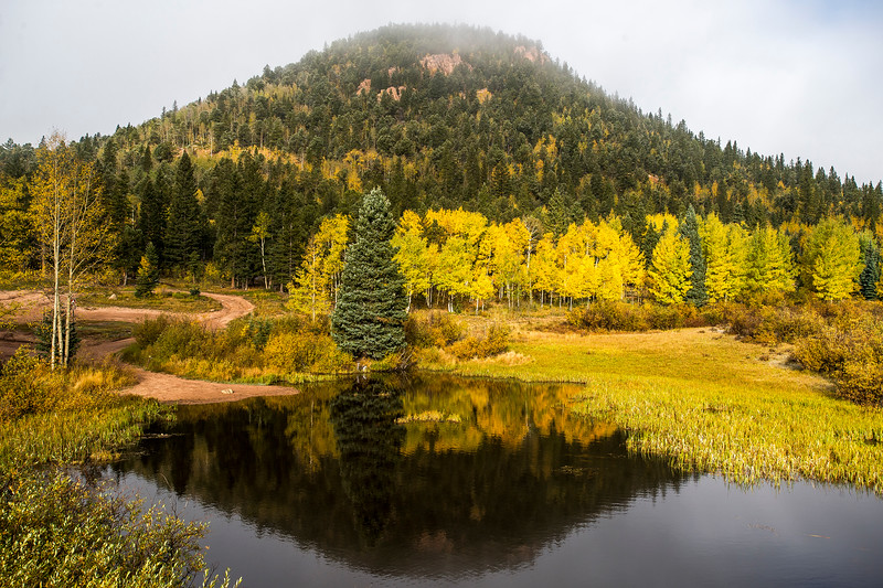 Turning aspens reflect off a pond in the Pike National Forest on Tuesday, Sept. 26, 2017. <br /> <br /> (The Gazette, Nadav Soroker)