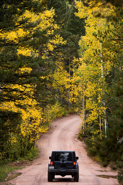 A Jeep drives down Forest Road 371 lined with golden aspens in the Pike National Forest on Tuesday, Sept. 26, 2017. <br /> <br /> (The Gazette, Nadav Soroker)
