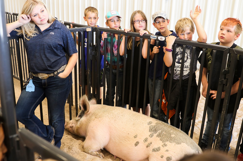 Kids from Burns Elementary School ask questions of FFA students at the Laramie County Ag Expo which exposes fourth graders from all the Laramie County Schools to agriculture and where their food comes from Tuesday, September 17, 2019 at the Archer Complex.