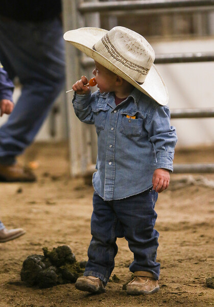 Cord Nichols, 2, chews on a candy before the start of the Shawn Dubie Memorial Rodeo Saturday, October 12, 2019 at the  Laramie County Community College Arena. Nichols' father, Mathew Nichols, is a bullfighter in the rodeo. Nadav Soroker/Wyoming Tribune Eagle