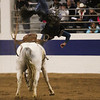 A cowboy is thrown from a bare in the Shawn Dubie Memorial Rodeo Saturday, October 12, 2019 at the  Laramie County Community College Arena. Nadav Soroker/Wyoming Tribune Eagle