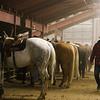 Gavin Duncan, from Sheridan, walks behind the chutes of the Shawn Dubie Memorial Rodeo Saturday, October 12, 2019 at the  Laramie County Community College Arena. Nadav Soroker/Wyoming Tribune Eagle