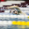 Sage Morton swims in her heat in the 500 Yard Freestyle prelims in the West Conference regional swimming championships Friday, Oct. 25, 2019 at the Laramie High School Natatorium. Nadav Soroker/Laramie Boomerang
