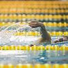 Madie Jablin swims in her heat in the 500 Yard Freestyle prelims in the West Conference regional swimming championships Friday, Oct. 25, 2019 at the Laramie High School Natatorium. Nadav Soroker/Laramie Boomerang