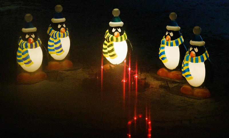Penguins circle a Christmas light campfire at a wildly decorated house Tuesday, Dec. 17, 2019 in North Cheyenne. The house is the climax of the holiday lights tour. Nadav Soroker/Wyoming Tribune Eagle
