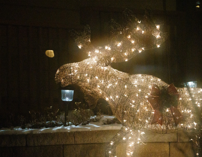 A festive moose passes by as Sue James takes guests on a tour of holiday lights Tuesday, Dec. 17, 2019 in North Cheyenne. Nadav Soroker/Wyoming Tribune Eagle