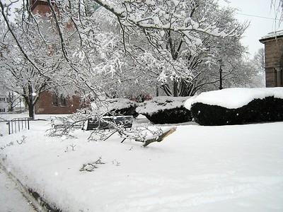 Snow-Dec 18, 2008