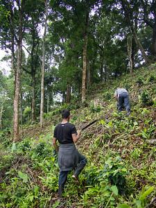 Nicaragua.17-254