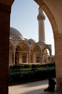 AleppoSyria09.2662
