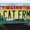 CAT FRM