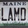 clamdip