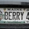berry 4