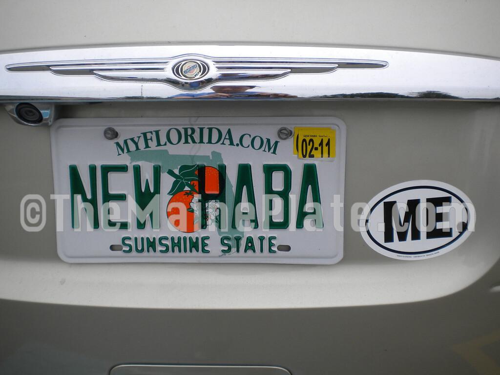 NEW HABA(2)