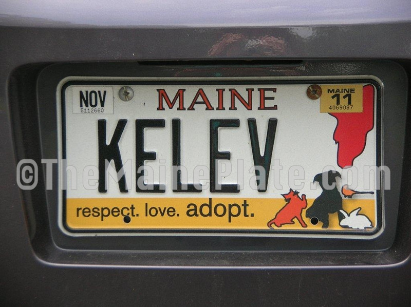 KELEV  means male dog in Hebrew.