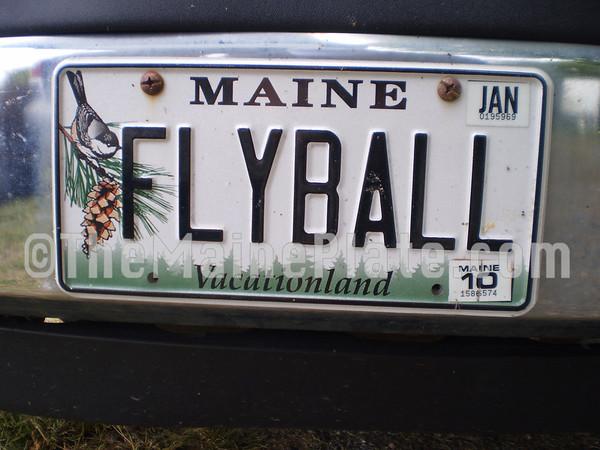 FLYBALL(2)