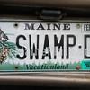 SWAMP-D