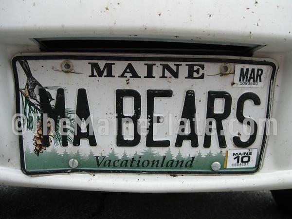 MA BEARS