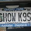 SHOW K9S