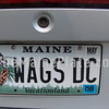 WAGS DC