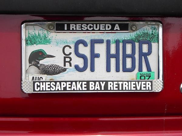 SFHBR