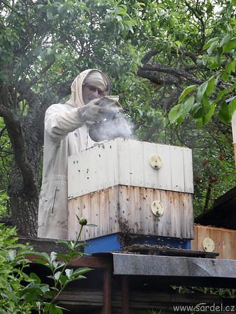 Vytáčení medu