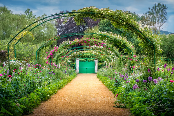Monet's Rose Arches at Giverny 3