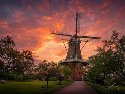 Windmill Sunrise, Holland, Michigan
