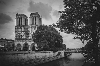 View of Notre Dame from Across the Seine River 2016