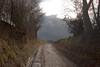 Chemin creux à Waterloo