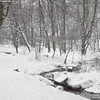 la vallée de la Woluwe sous la neige