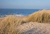 La mer et les dunes