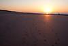 La plage au crépuscule