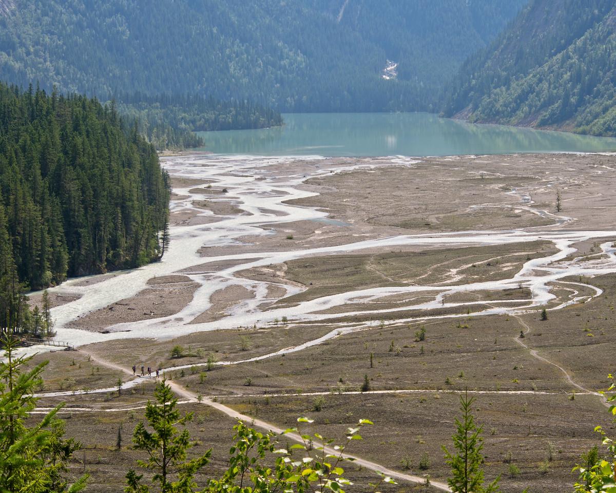 Kinney Lake flats - Berg Lake trail