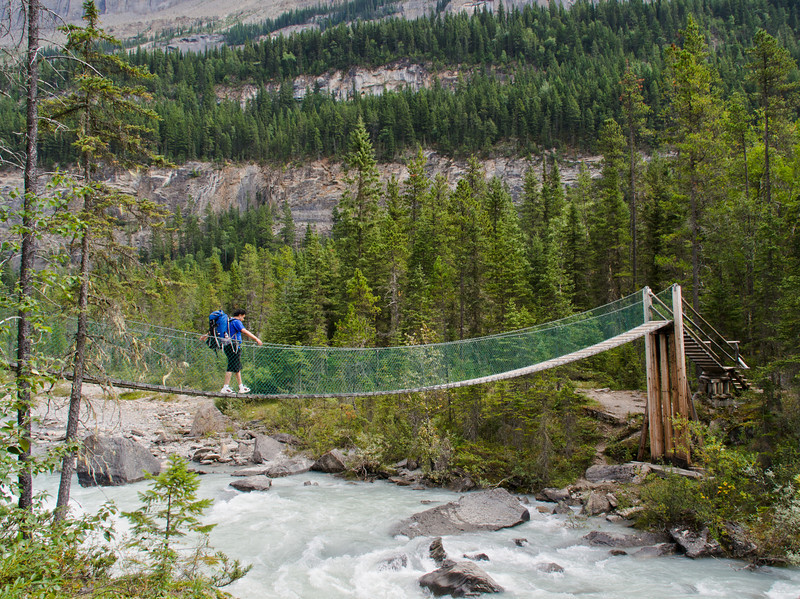 Suspended bridge across Robson river - Berg Lake trail
