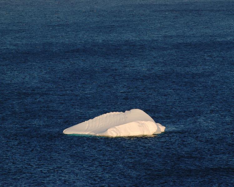 Iceberg - Labrador